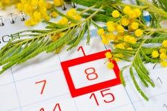 8 kort för mars - mimosablommor över kalendern med det inramade 8 datumet för mars Royaltyfria Bilder