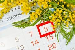 8 kort för mars - mimosablommor över kalendern med det inramade 8 datumet för mars Arkivfoton