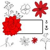Kort för röda och vita blommor Royaltyfri Bild