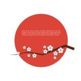 Kort för Sakura blomninghälsning Royaltyfri Fotografi