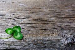 Kort för St Patrick daghälsning med fes för tre-sidor växt av släktet Trifoliumirländare Arkivfoton
