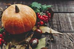 Kort för tacksägelse- eller halloween begreppshälsning härlig pumpk Royaltyfria Bilder