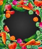 Kort för vattenfärgsammansättningsvattenfärg med grönsakillustrationen Royaltyfria Bilder