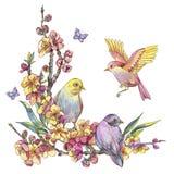 Kort för vattenfärgvårhälsning, blom- bukett för tappning med bir vektor illustrationer