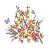 Kort för vattenfärgvårhälsning, blom- bukett för tappning med blo royaltyfri illustrationer