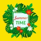 Kort för vektor för sommartid Tropiska sidor och blommor planlägger med enkel text Moderiktig vändkretsstil Ljust färgar gulligt vektor illustrationer