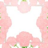 Kort med blommor och ställe för text Royaltyfri Fotografi