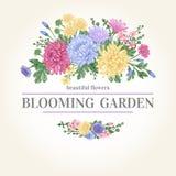 Kort med en bukett av blommor Fotografering för Bildbyråer