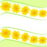 Kort med gula blommor Vektor Illustrationer