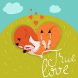 Kort med gulliga förälskade rävar som sover på ängvektorbilden vektor illustrationer