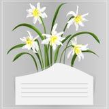 Kort med påskliljor stock illustrationer