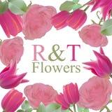 Kort med rosa rosor och tulpan stock illustrationer