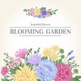 Kort med trädgårds- blommor Arkivbild
