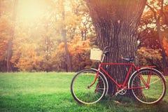 Kort och modell med cykeln