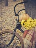 Kort och modell med cykeln royaltyfria foton