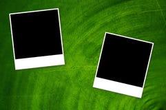 Kort på bakgrund för grön färg royaltyfri illustrationer