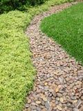 Kort textur för gräsgräsmatta- och kullerstentrottoar Royaltyfri Bild