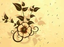kortdesign Royaltyfri Bild