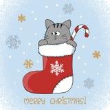 Kortdesign för glad jul Gullig katt i en julstrumpa Fotografering för Bildbyråer