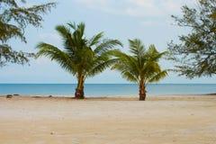Korte Palmen door de Oceaan bij het Strand van Prek Treng, Kambodja Stock Fotografie