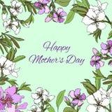 kortet blommar fjädern Dag för mödrar för fo för textram med delikata rosa och purpurfärgade blommor royaltyfri illustrationer