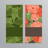 kortet blommar hälsning också vektor för coreldrawillustration Royaltyfri Foto