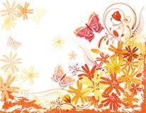 kortet blommar sommar Royaltyfri Bild