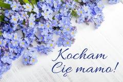 Kortet för dagen för moder` D med polermedel uttrycker: JAG ÄLSKAR DIG MAMMAN Royaltyfria Foton