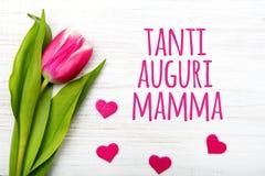 Kortet för dagen för moder` s med italienare uttrycker: Lycklig dag för moder` s Royaltyfri Bild