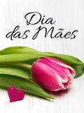 Kortet för dagen för moder` s med portugis uttrycker: Lycklig dag för moder` s Royaltyfri Bild