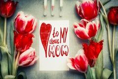 Kortet för hälsningen för moderdagen med text som märker till mina kära mamma, blyertspenna och tulpan, blommar Royaltyfri Foto