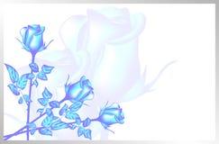 Kortet för valentin dag Bild av förälskelse blåa ro blommar is Royaltyfri Bild