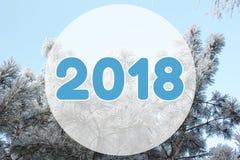 kortet för 2018 vinter landskapbakgrund på pastellblått färgar Fotografering för Bildbyråer