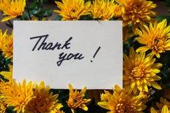 Kortet med handskriven text tackar dig på en bakgrund av blomman Royaltyfri Foto