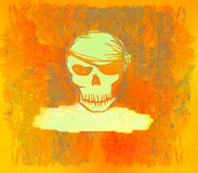 kortet piratkopierar skallen Arkivfoto