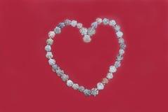 korthjärta shells valentiner Royaltyfri Fotografi