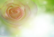 1 kortinbjudan Royaltyfri Foto