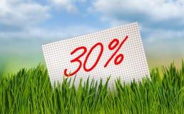 Korting voor verkoop, 30 percentenkorting tegen de hemel Stock Afbeelding