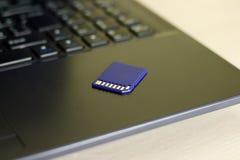 kortminne sd Blått är på bärbara datorn Arkivfoto