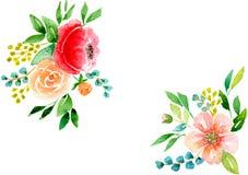Kortrosa färgblommor Fotografering för Bildbyråer