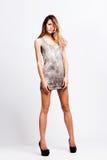 kortsluter höga skor för klänninghäl kvinnan Arkivfoto