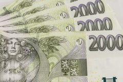 Koruny ceske. Various Czech money on the white background Royalty Free Stock Photo