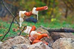 Korvar och campfire Royaltyfri Fotografi