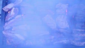 Korvar och paprika på grillfestgaller arkivfilmer