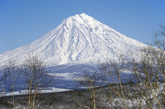 Koryaksky volcano of Kamchatka Peninsula. Stock Images