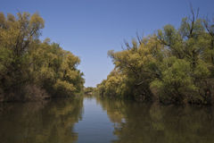 korytkowa rzeka Zdjęcie Stock