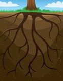 Korzenia drzewa tło ilustracja wektor