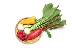 Korzeniowi warzywa na bambusowym colander Zdjęcia Stock