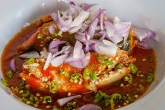 Korzenne makrele sałatkowe w pomidorowym kumberlandzie Tajlandzki kucharstwo, ciemny brzmienie Zdjęcie Royalty Free