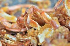 Korzenni smażący kraby zawijający w pszenicznej mące obrazy stock